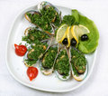 Oysters with lemon and tomatoes Royalty Free Stock Images