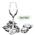 Oysters and wine glass hand drawn illustration Royalty Free Stock Image