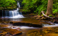Ozone falls at rickett s glen state park pennsylvania Royalty Free Stock Image