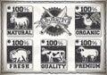 Página del vintage para el carnicero shop labels Foto de archivo libre de regalías