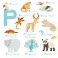 P letter animals set english alphabet vector illustration on white background Royalty Free Stock Photo