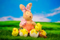 Paashaas met chick happy easter egg Royalty-vrije Stock Fotografie
