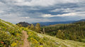 Pacific crest trail in northern california usa Royalty Free Stock Photography