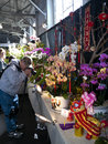 Pacific orchid exposition took place year fort mason san francisco attracted many orchid lovers photographers photo taken february Stock Photos