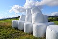 Packed hay bales Royalty Free Stock Photo