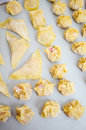 Packing and shaping wontons wonton with pork shrimp composition Royalty Free Stock Image
