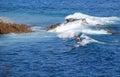 Standup paddle boarder surfing off Heisler Park, Laguna Beach, California. Royalty Free Stock Photo