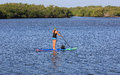 Paddle Boarding Expert