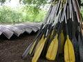 Paddle Pile Royalty Free Stock Photo