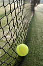 Paddle tennis still life objects on turf near to net Stock Photos