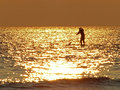 Paddleboarding At Sunset Royalty Free Stock Photo