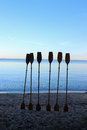 Paddles in the sand Royalty Free Stock Photo