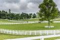 Paddocks Of White Fences On Ho...
