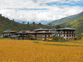 Paddy field in bhutan traditional bhutanese houses and the surrounded fields Stock Photo