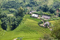 Paddy fields and small villages on a hills in northern vietnam Royalty Free Stock Images