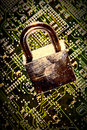 Padlock circuit Stock Photography