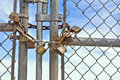 Padlocks chainlink fence multiple used on a help keep it lock and close Stock Photos