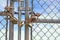 Padlocks Chainlink Fence Royalty Free Stock Photo