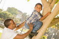 Padre felice helping son climb della corsa mista un albero Fotografie Stock