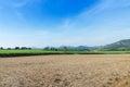 Paesaggio tropicale dell azienda agricola di agricoltura del giacimento della canna da zucchero Immagini Stock Libere da Diritti