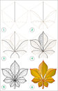 Page shows how to learn step by step to draw a chestnut leaf vector image developing children skills for drawing and coloring Royalty Free Stock Images