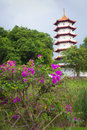 Pagoda in the Chinese garden, Singapore Royalty Free Stock Photo