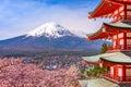 Pagoda and Fuji in Spring Royalty Free Stock Photo