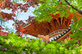Pagoda seen through japanese maple trees of a temple lush maples leaves of a forest in japan Royalty Free Stock Photos