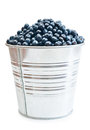 A pail full of freshly picked blueberries vertical format isolated on white background Royalty Free Stock Photography