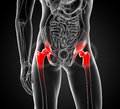 Painful hip joint d rendered medical illustration of a front Stock Images