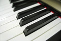 Paino keys close up of piano Stock Photography