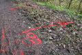 Paint markings to locate a gas leak red show the location of suspected on rural road Royalty Free Stock Images