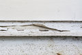 Paint peeling off exterior wooden window sill Royalty Free Stock Photo