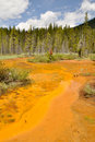 Paint Pots in Kootenay National Park, Canada Stock Photography