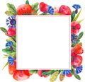 Painted Blank Watercolor Flower Frame Square Border Background.