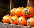 stock image of  Painted decorative organic pumpkins in a market