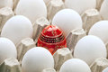 Painted Easter egg among white fresh eggs Royalty Free Stock Photo