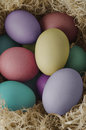 Painted easter eggs nesting elevated view of in various hues grouped and nested in dried grass Royalty Free Stock Photos