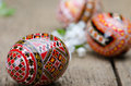 Painted easter eggs and plum cherry flowers on wooden surface Royalty Free Stock Photos