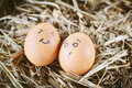 Painted  eggs about emotion on the face Royalty Free Stock Photo