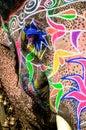 Painted elephant, Jaipur, Rajasthan, India Royalty Free Stock Photo