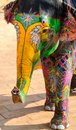 Painted elephant, Jaipur, Rajasthan, India Royalty Free Stock Photo