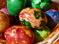Painted natural eggs real for easter Stock Photos