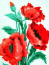 Painted poppy flowers red on white paper Stock Photography