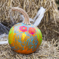 Painted pumpkin a bright and colorful is for halloween Stock Image