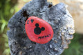 Painted rock states `I Love Mickey`