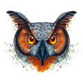 Painted watercolor picture of a ravenous night owl bird on a white background with red orange eyes with bright colors