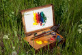 Painter's case on grass Royalty Free Stock Photo
