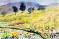 Painting art watercolor landscape original colorful of flowers