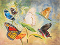 Painting of Six Beautiful Butterflies Stock Images